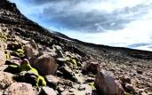 Paisaje de yaretas, rocas y cielos