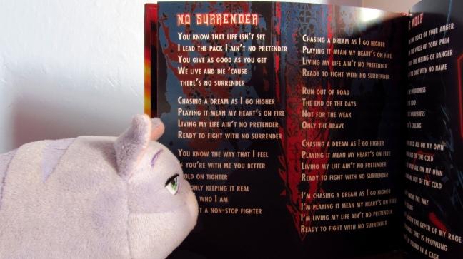076 No surrender y gato blog
